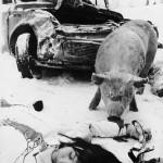 Bensaa suonissa (1970). Ohjaus: Risto Jarva